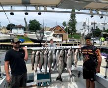A great catch of Salmon and Trout from the Port of Kenosha.