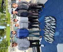 Nice catch of Salmon.
